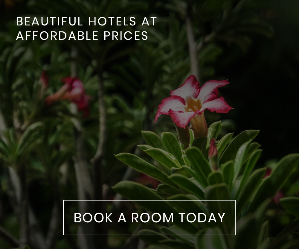 BEAUTIFUL HOTELS AT AFFORDABLE PRICES
